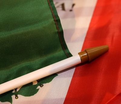 スティックフラッグ 棒付きメキシコ国旗 アメリカ直輸入 MEXICO アメリカ雑貨屋 サンブリッヂ